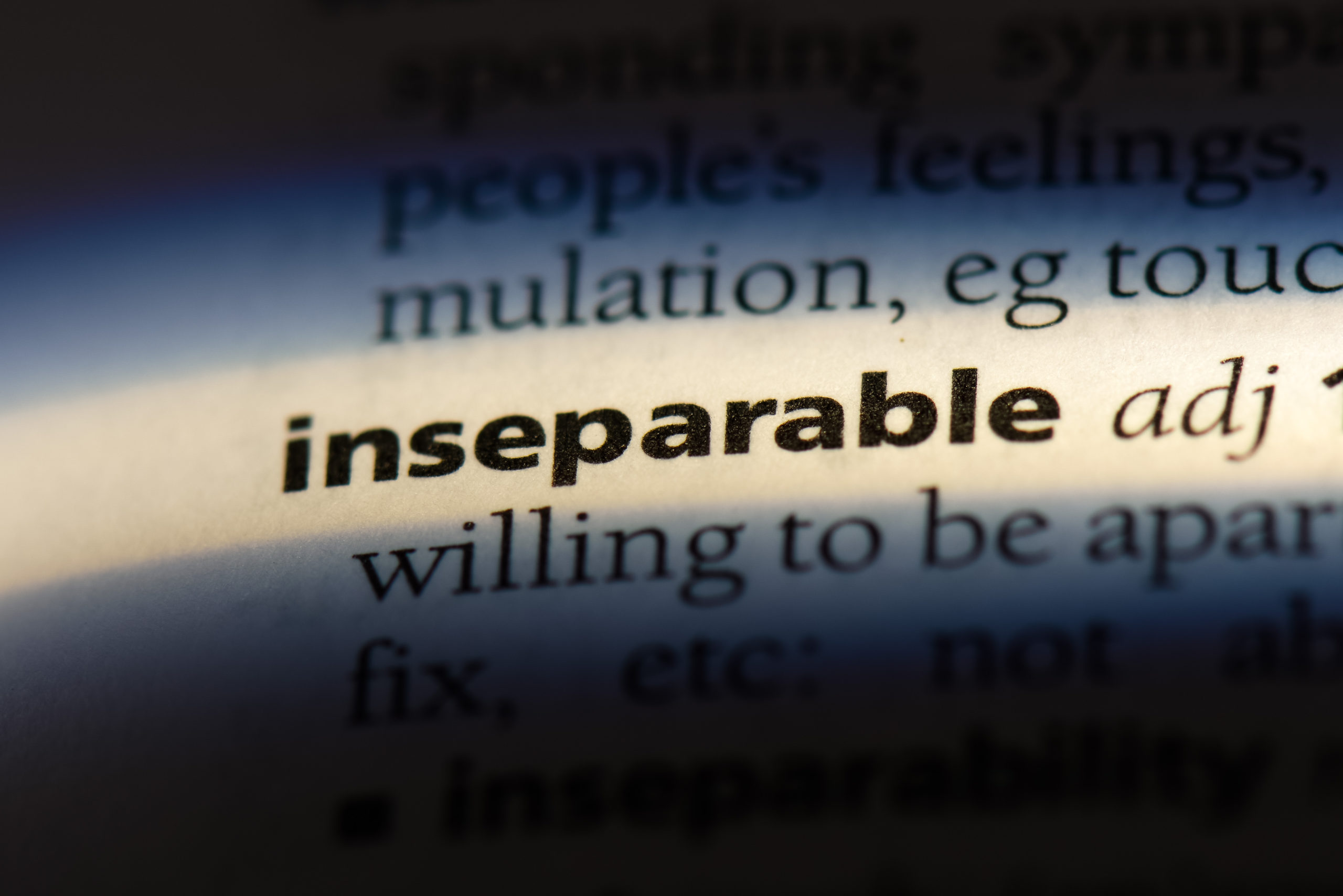 Inseparable,Word,In,A,Dictionary.,Inseparable,Concept.